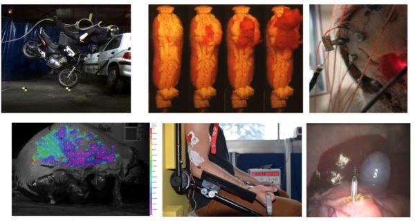 Etude et reproduction des propriétés biomécaniques de l'humain